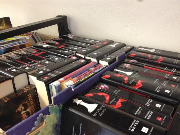 sea-of-twilight-books
