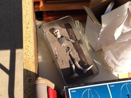 half-buried-skeleton