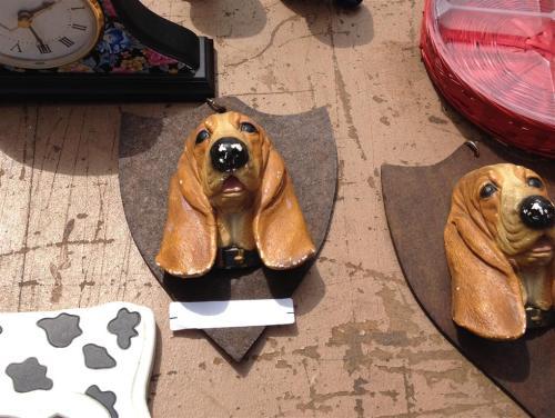 mounted-dog-heads