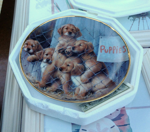 puppy-mill-plate