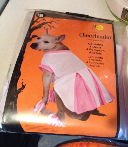 dog-cheerleader-costume