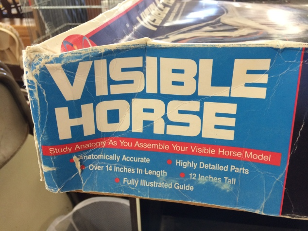 visible-horse-1