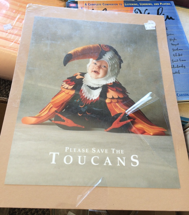 save-the-toucans-poster
